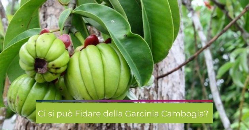 garcinia_cambogia-integratori-dimagrire-controindicazioni-effetti_collaterali